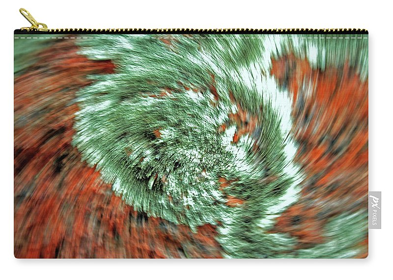Lichen Carry-all Pouch featuring the photograph Lichen On Granite by Ric Bascobert