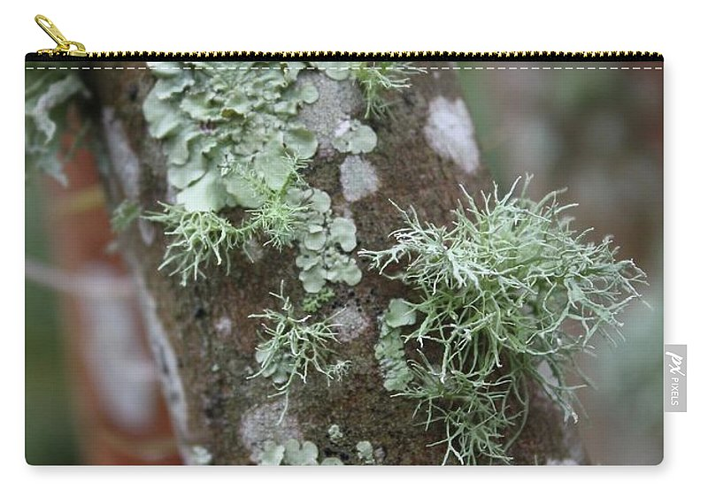 Nature Carry-all Pouch featuring the photograph Lichens 4 by Carol Groenen