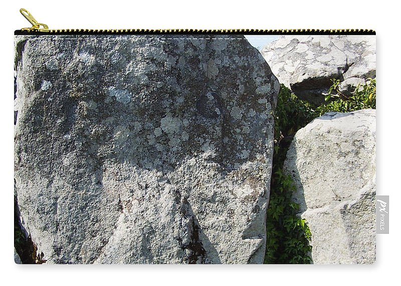 Irish Carry-all Pouch featuring the photograph Life At Creevykeel Court Cairn Sligo Ireland by Teresa Mucha
