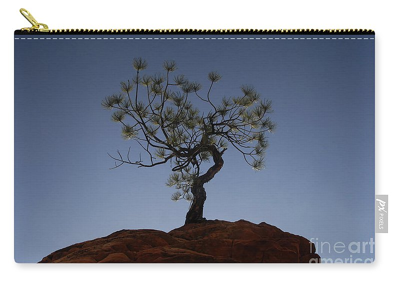 Tree Carry-all Pouch featuring the photograph Life Force by David Lee Thompson