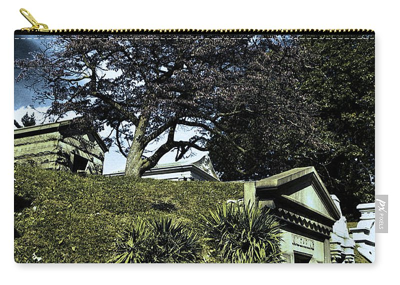 Cemetery Carry-all Pouch featuring the photograph Life From Death by Scott Wyatt