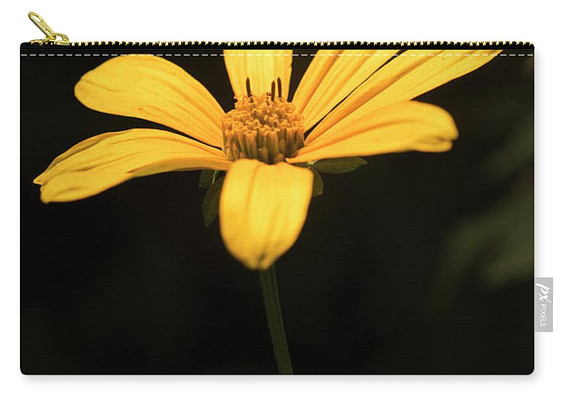 Light Carry-all Pouch featuring the photograph Light From Darkness by Michelle Himes