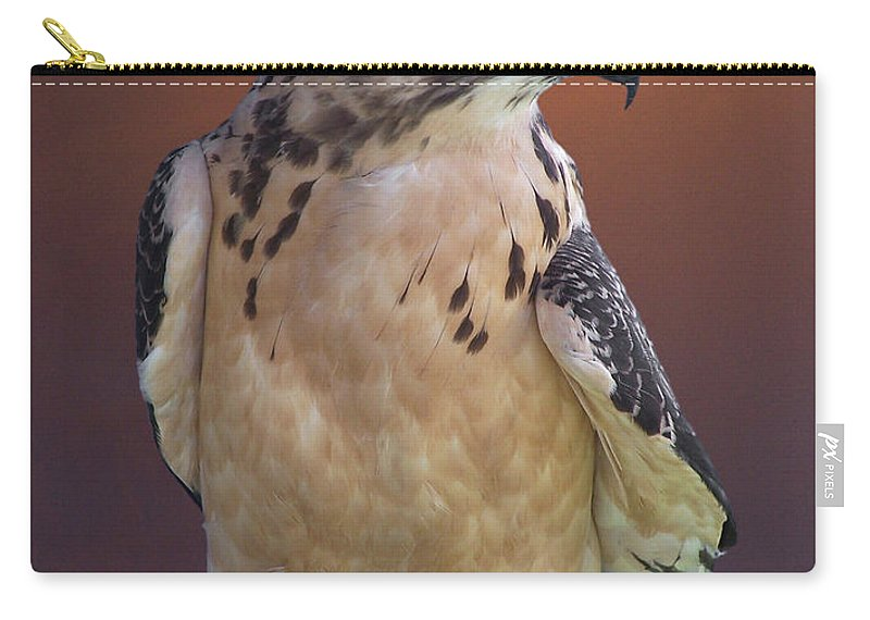 Light-morph Immature Swainson's Hawk Carry-all Pouch featuring the photograph Light Morph Immature Swainsons Hawk by Ernie Echols