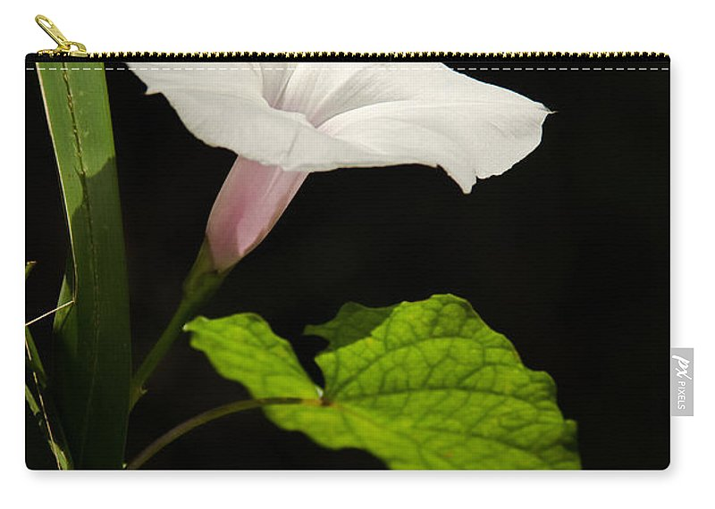 Flower Carry-all Pouch featuring the photograph Light Out Of The Dark by Christopher Holmes