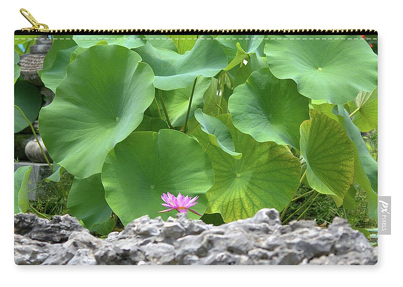 Roy Williams Carry-all Pouch featuring the photograph Light Purple Water Lily And Large Green Leaves by Roy Williams