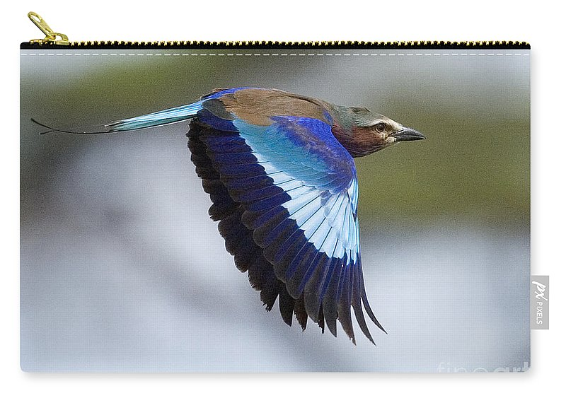 Coracias Caudatus Carry-all Pouch featuring the photograph Lilac-breasted Roller-signed by J L Woody Wooden