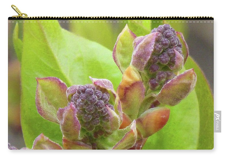 Flowers Carry-all Pouch featuring the photograph Lilac Buds by Cris Fulton