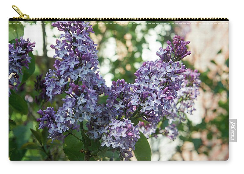 Lilac Carry-all Pouch featuring the photograph Lilacs In Spring by Adam Gladstone