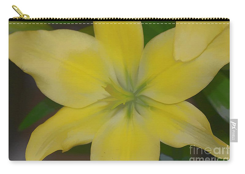 Lilly Carry-all Pouch featuring the photograph Lilly With Artistic Beauty by Deborah Benoit