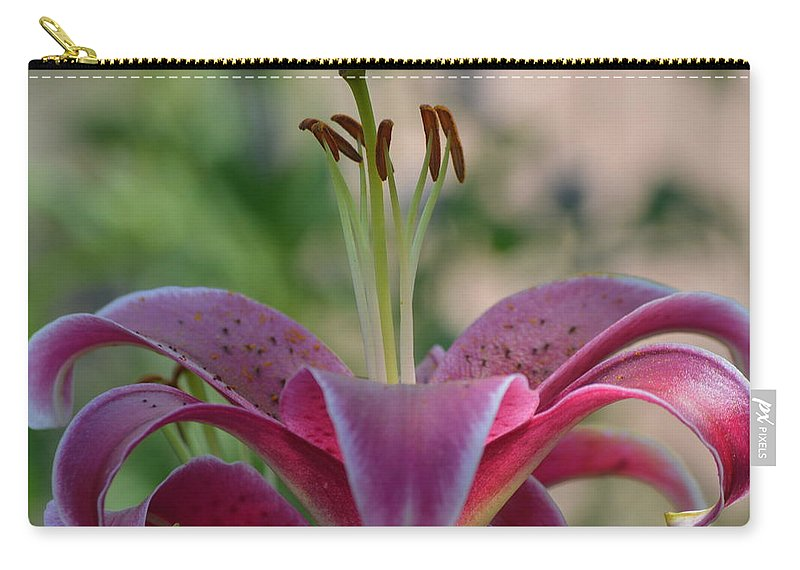 Lilys Carry-all Pouch featuring the photograph Lily 4 by Brad Kennedy