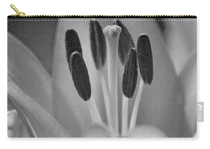Lily Carry-all Pouch featuring the photograph Lily - American Cheerleader 11 - Bw - Water Paper by Pamela Critchlow