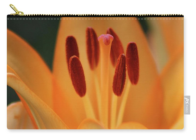 Lily Carry-all Pouch featuring the photograph Lily - American Cheerleader 15 by Pamela Critchlow