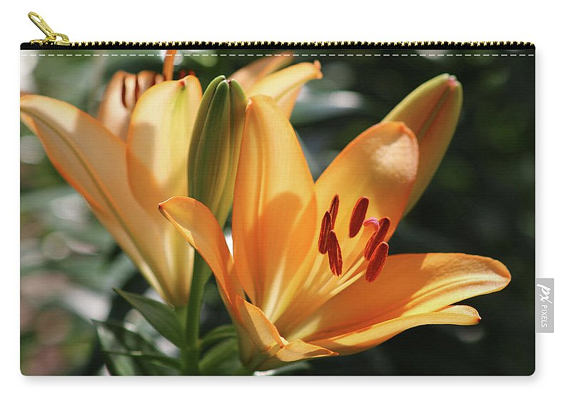 Lily Carry-all Pouch featuring the photograph Lily - American Cheerleader 22 by Pamela Critchlow