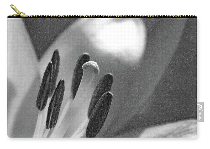 Lily Carry-all Pouch featuring the photograph Lily - American Cheerleader 24 - Bw - Water Paper by Pamela Critchlow