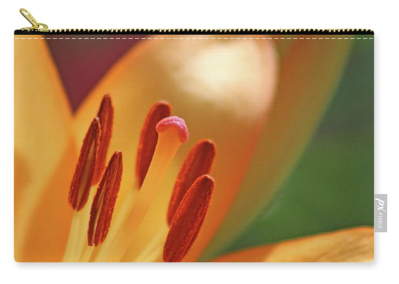 Lily Carry-all Pouch featuring the photograph Lily - American Cheerleader 26 by Pamela Critchlow