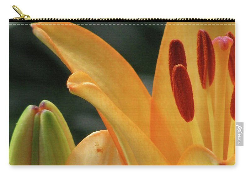 Lily Carry-all Pouch featuring the photograph Lily - American Cheerleader 32 by Pamela Critchlow