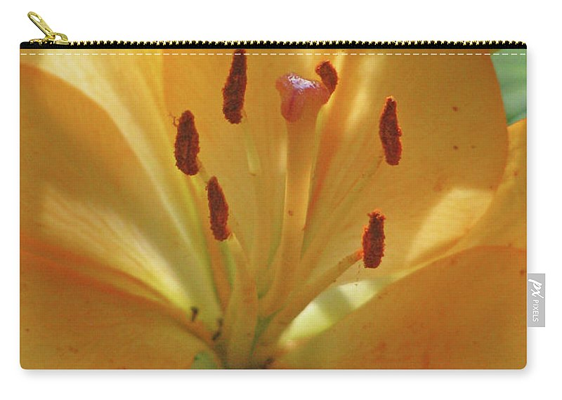Lily Carry-all Pouch featuring the photograph Lily - American Cheerleader 38 by Pamela Critchlow