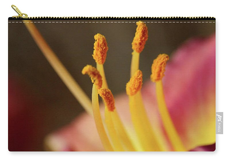 Arrangement Carry-all Pouch featuring the photograph Lily Bloom by Alan Look
