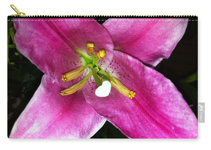 Flower Carry-all Pouch featuring the photograph Lily by Kimberly Mohlenhoff