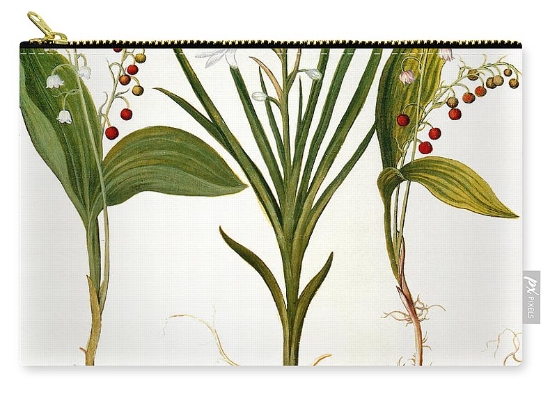 1613 Carry-all Pouch featuring the photograph Lily-of-the-valley by Granger