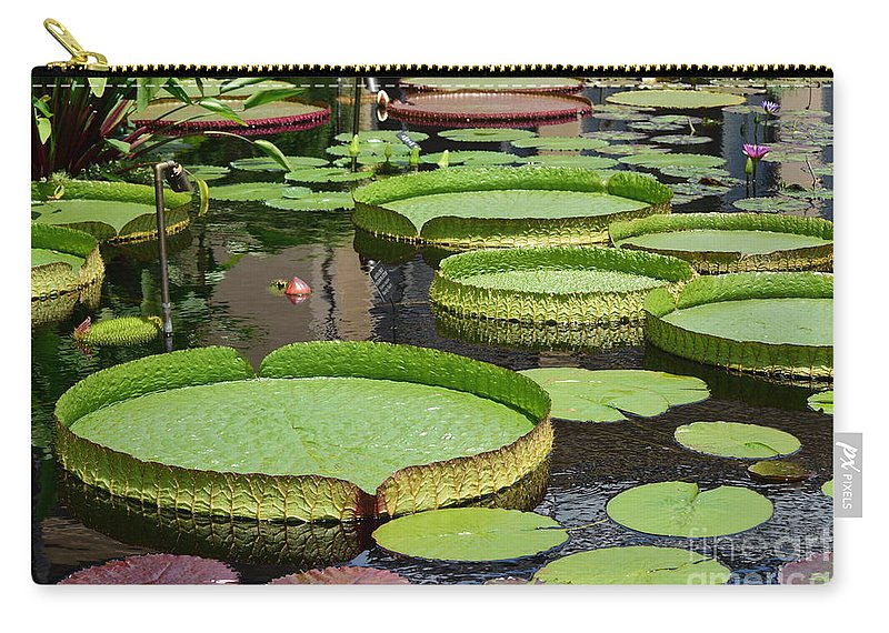 Lily Pads Carry-all Pouch featuring the photograph The Lily Pond by Jeannie Rhode