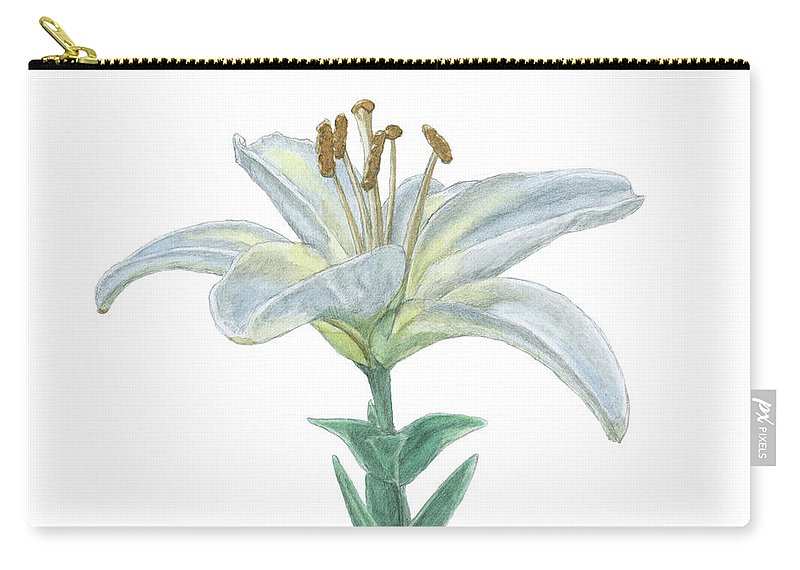 Lily Carry-all Pouch featuring the painting Lily Watercolor by Dominic White