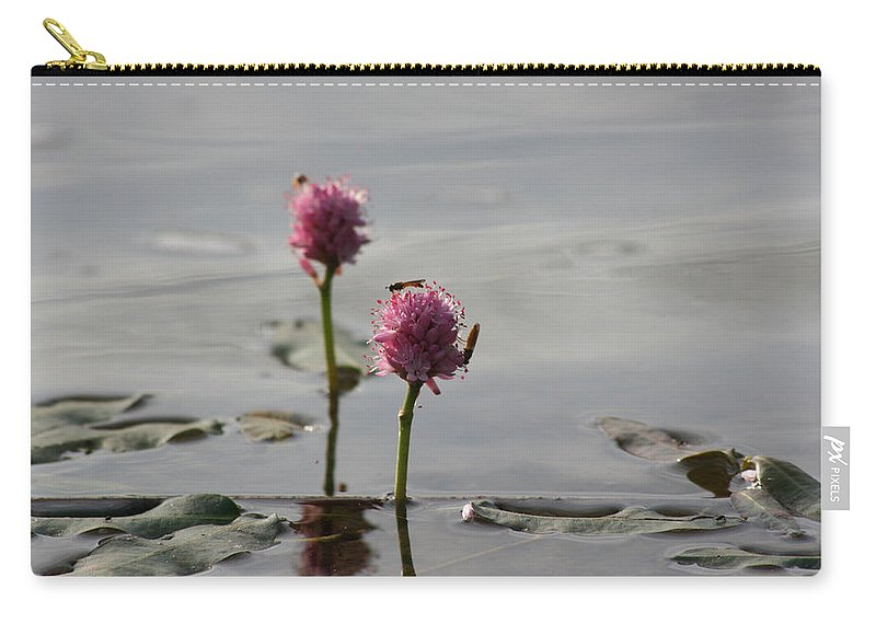 Wasp Lilypads Water Lake Plants Nature Wild Bugs Pink Flower Carry-all Pouch featuring the photograph Lilypads And Wasps by Andrea Lawrence