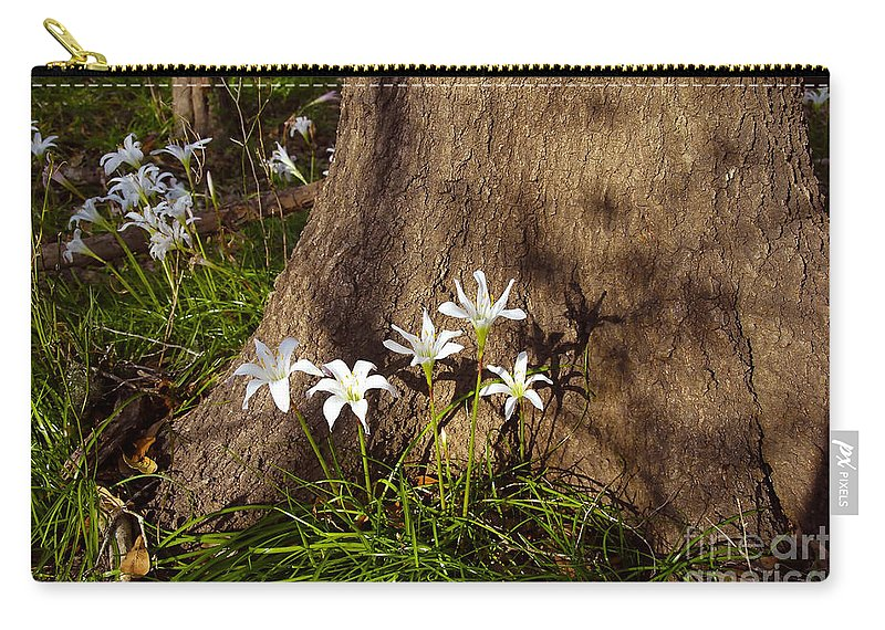 Atamasco Carry-all Pouch featuring the photograph Lily's Atamasco by David Lee Thompson