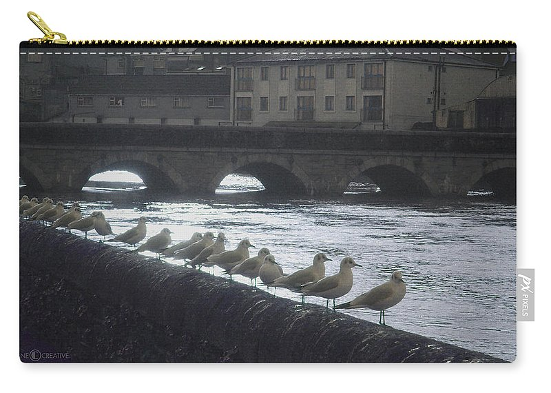 Birds Carry-all Pouch featuring the photograph Line Of Birds by Tim Nyberg