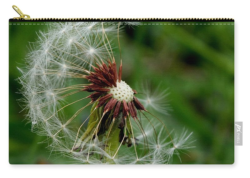 Dandelion Carry-all Pouch featuring the photograph Lingering by Karen Harrison