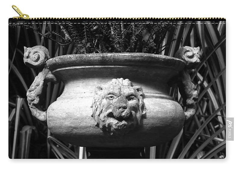 Lion Carry-all Pouch featuring the photograph Lion And Serpents by David Lee Thompson