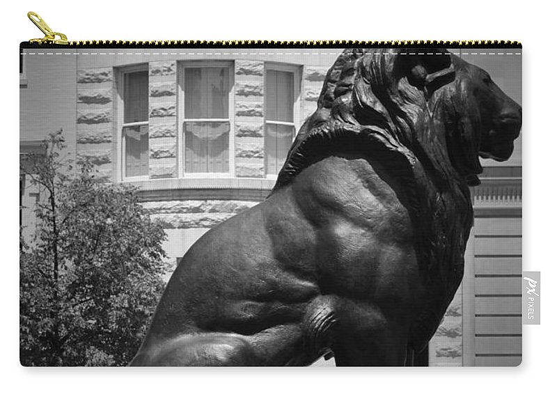 Lion Carry-all Pouch featuring the photograph Lion In The Spring by Jost Houk