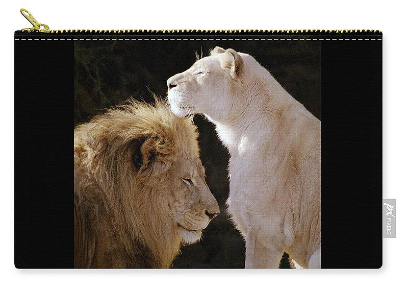 Lion Carry-all Pouch featuring the photograph Lion Yin Yang by Rose De Dan