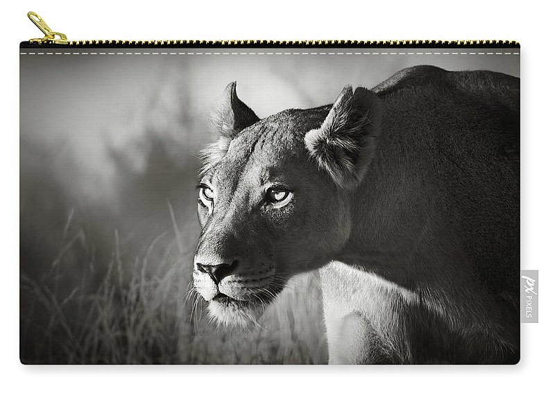 Lioness Carry-all Pouch featuring the photograph Lioness Stalking by Johan Swanepoel