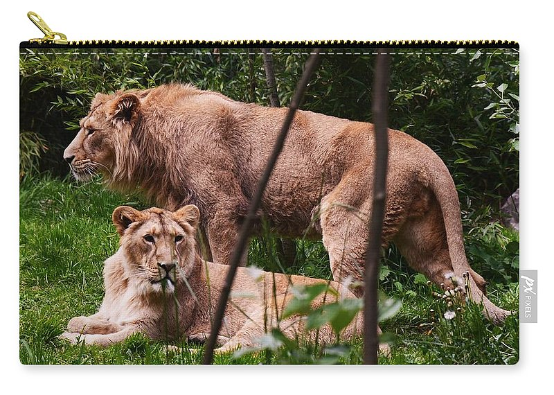 Lions Carry-all Pouch featuring the photograph Lions by Johnny Griffin