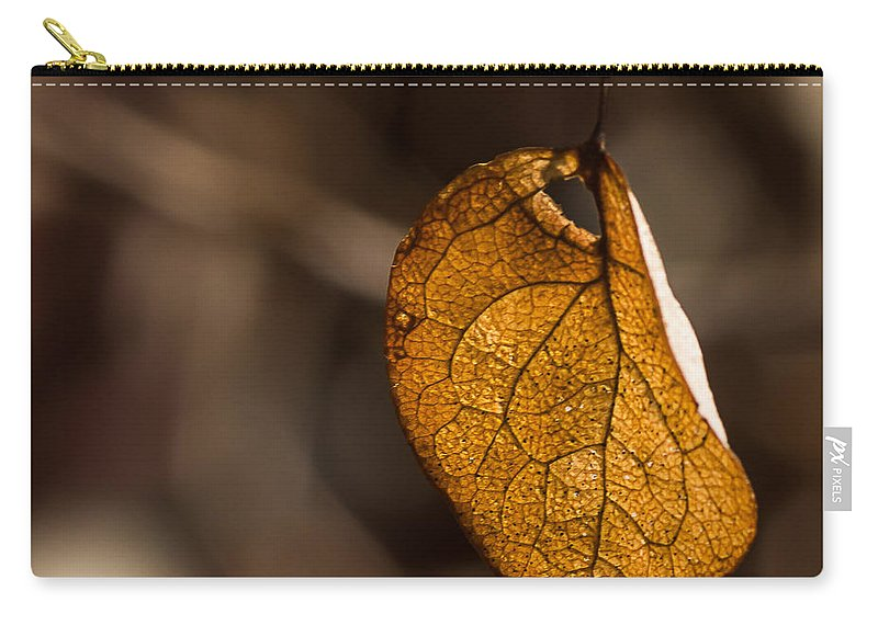Leaf Carry-all Pouch featuring the photograph Little Autumn Leaf by Alissa Beth Photography