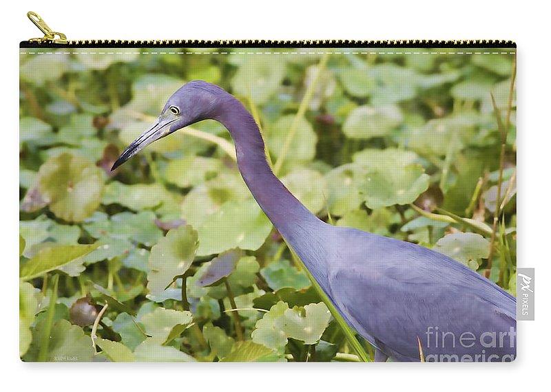 Little Blue Heron Carry-all Pouch featuring the photograph Little Blue At De Leon Springs by Deborah Benoit