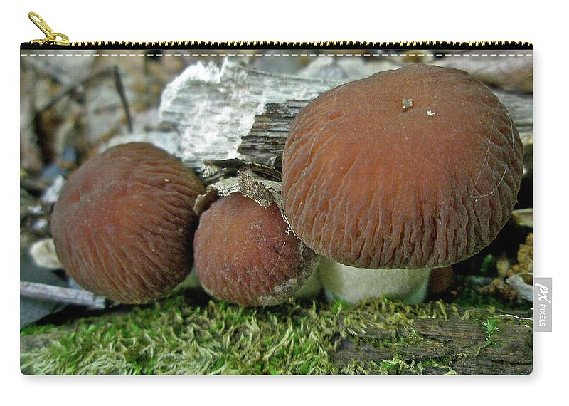 Mushroom Carry-all Pouch featuring the photograph Little Brown Mushrooms In Moss by Mother Nature