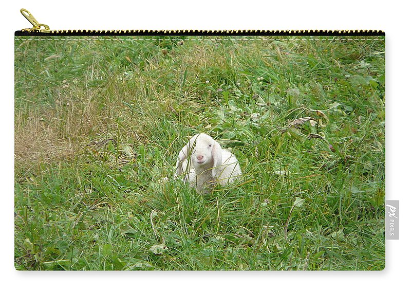 Lamb Carry-all Pouch featuring the photograph Little Lamb by Valerie Ornstein