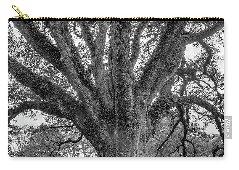 Oak Alley Plantation Carry-all Pouch featuring the photograph Living History Bw by Steve Harrington