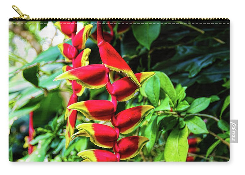 Jon Burch Carry-all Pouch featuring the photograph Lobster Claw by Jon Burch Photography