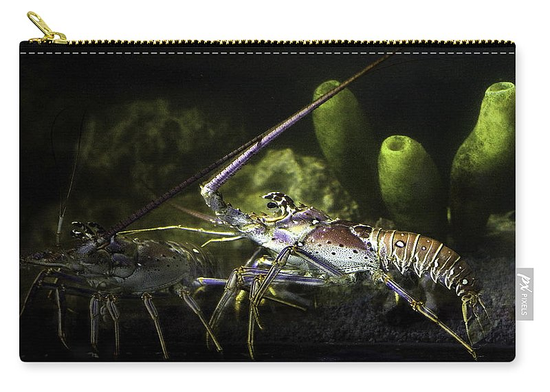 Lobster Carry-all Pouch featuring the photograph Lobster In Love by Marilyn Hunt