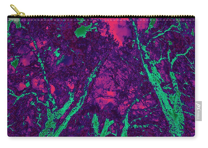 Trees Carry-all Pouch featuring the photograph Locals 5 by Gary Bartoloni