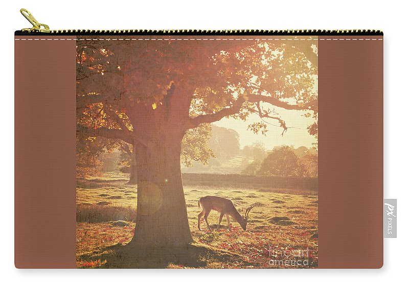 Deer Carry-all Pouch featuring the photograph Lone Deer by Lyn Randle