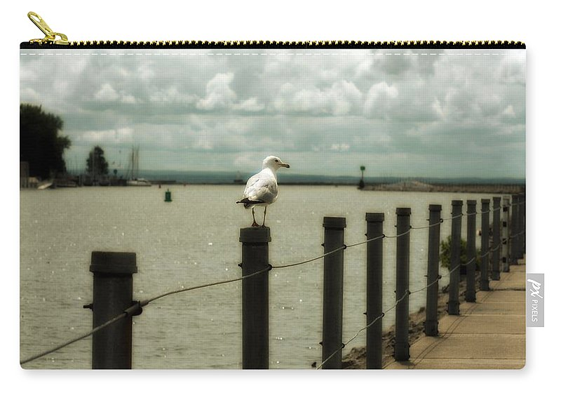 Lake Erie Pier Carry-all Pouch featuring the photograph Lone Pier Seagull by Gothicrow Images