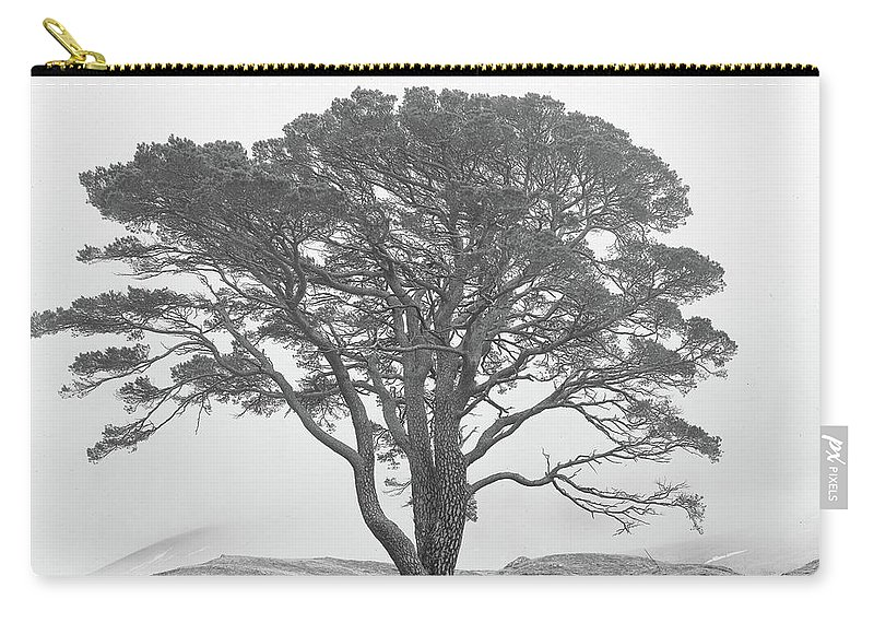 Carry-all Pouch featuring the photograph Lone Scots Pine, Crannoch Woods by Iain Duncan