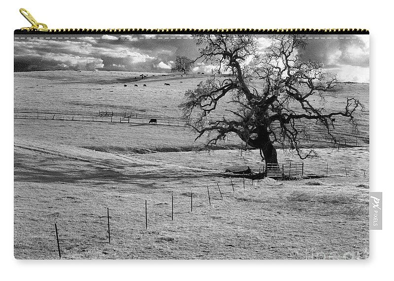 Western Scenes Carry-all Pouch featuring the photograph Lone Tree And Cows 2 by Norman Andrus