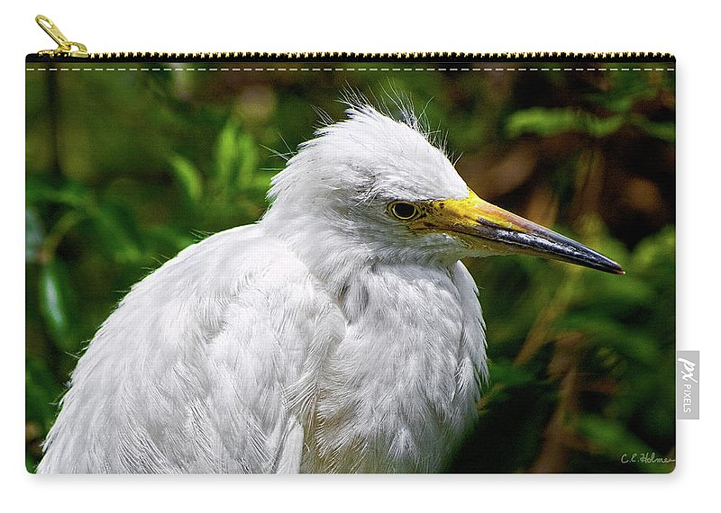 Snowy Egret Carry-all Pouch featuring the photograph Lonely Bird by Christopher Holmes