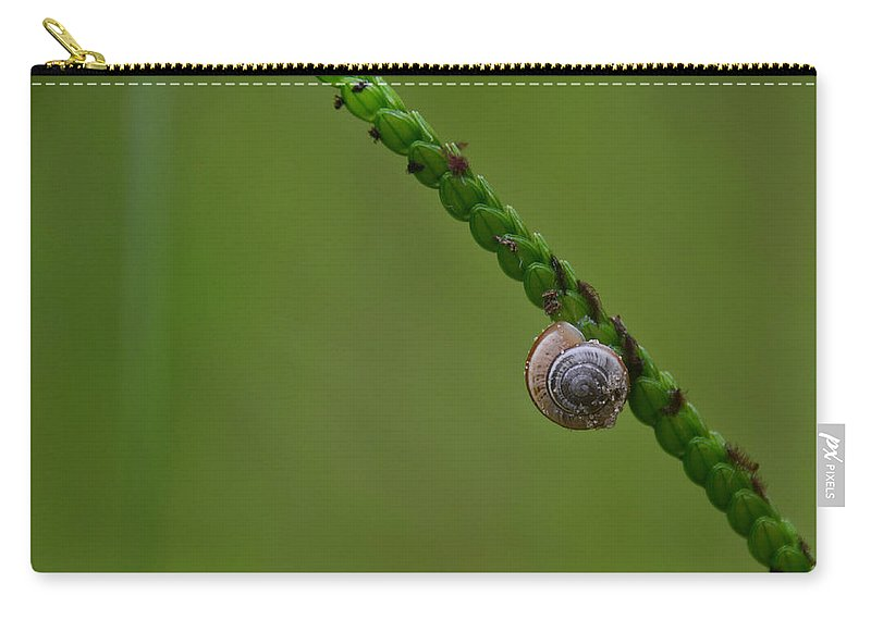 Minimal Carry-all Pouch featuring the photograph Lonely Snail -florida by Adrian DeLeon