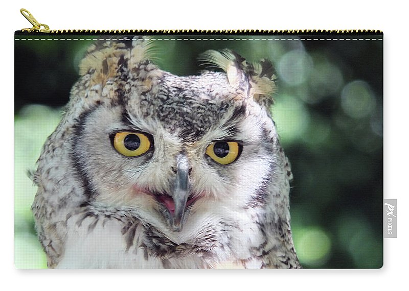 Owl Carry-all Pouch featuring the photograph Long Eared Owl In The Trees by Philip Openshaw